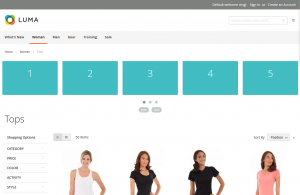 OWL slider implmented on Magento 2